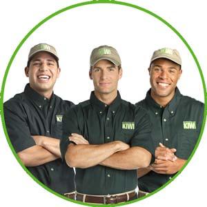 KIWI carpet cleaners