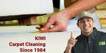 carpet cleaning by 2 KIWI techs
