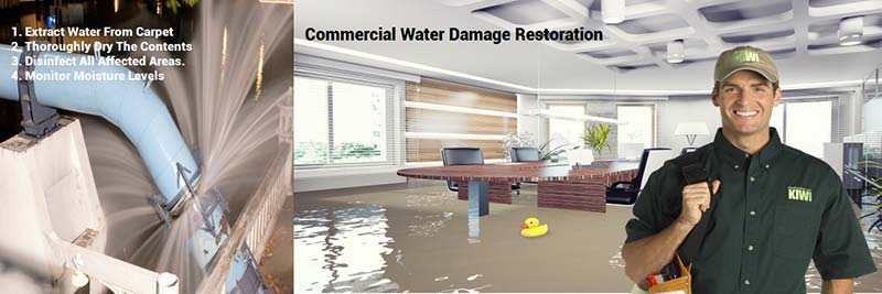 professional commercial water damage restoration phoenix