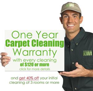Beautiful Atlanta Carpet Cleaning Services