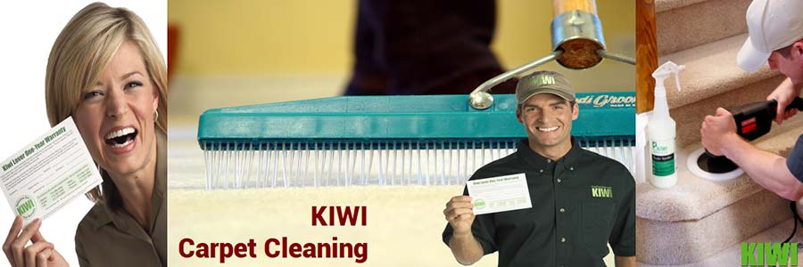 carpet cleaning by Kiwi technician in  chandler heights