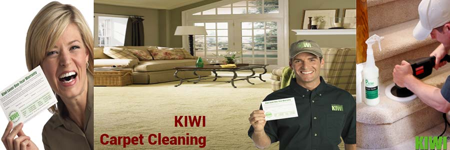 carpet cleaning by Kiwi technician in  gilbert