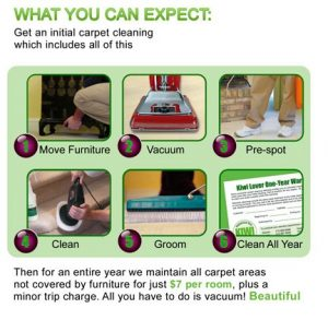 KIWI Carpet Cleaning Services Steps