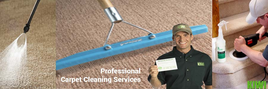 carpet cleaned and groomed  in  sunnyslope