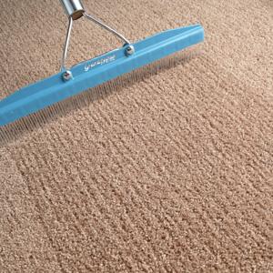 Carpet Rakes