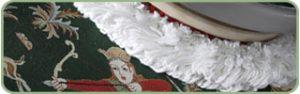 KIWI stain removal