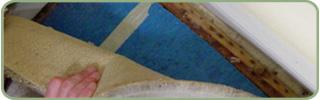 Expert Berber Carpet Repair Services