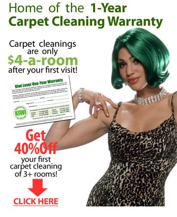 Lake City Carpet Cleaning Sale –  a Room