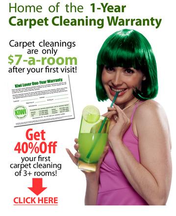 Englewood CO Carpet Cleaning Services