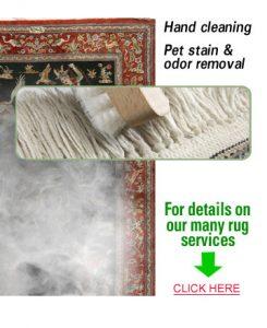 KIWI cleaning process