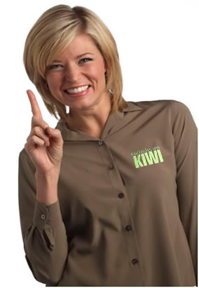 KIWI carpet cleaning reviews dallas