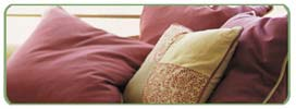 University Park Upholstery Cleaning Services