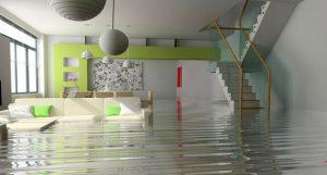 KIWI water damage restoration